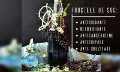 La ce putem folosi FRUCTELE de SOC Healthy Nutrition, Teas, Lettering, Natural, Plants, Flu, Thermomix, Healthy Food, Tees