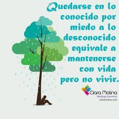 FLUYE... (((Sesiones y Cursos Online www.ciaramolina.com #psicologia #emociones #salud)))