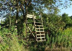 Der Hochsitz. Die Hochsitze.  Oder: Der Jägersitz. Die Jägersitze.  Dieser Hochsitz steht vor einem Baum.