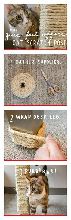 This DIY Homemade Cat Scratching Post was just too darn awesome not to share! If you have a cat (or a few), they are sure to love this, as…