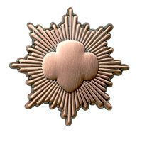 BRONZE AWARD PIN $7.50 #09901 For Junior Girl Scouts. *Must have approval to be awarded this pin.