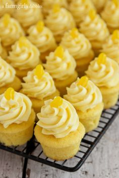 Triple Lemon Baby Cakes with Lemon Pudding Cream - afarmgirlsdabbles.com