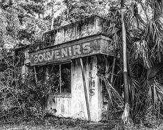 Abandoned Souvenir Shop found along the Florida / Georgia border on US Highway 17 in Yulee, Florida. Clearwater Florida, Sarasota Florida, Florida Beaches, Kissimmee Florida, Jacksonville Fl, Vintage Florida, Old Florida, South Florida, Old Buildings