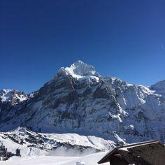Grindelwald ist cool ⛷☀️