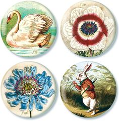 beautiful mirror compacts