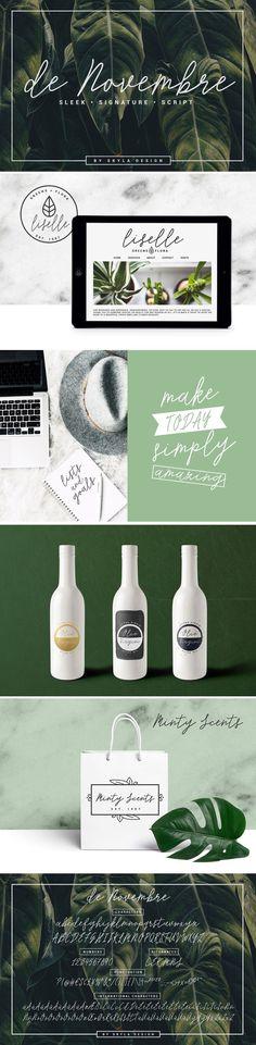 Sleek signature script, de Novembre by Skyla Design on @creativemarket #font #typeface #typegang #typespire #typematters #type #fontdesign #typography #graphicdesign #typographyinspire #script #handmadefont #creativemarket