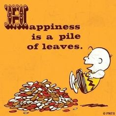 Happiness is a pile of leaves.
