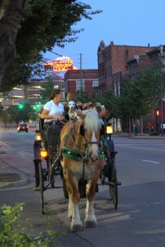 Take a tour of Downtown Chattanooga in the city's only carriage company. They'll pick you up at the Aquarium and you'll take a ride all the way to the history Chattanooga Choo Choo.