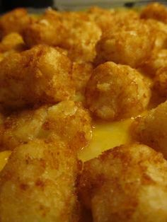The life of a southern housewife: Tater Tot Casserole
