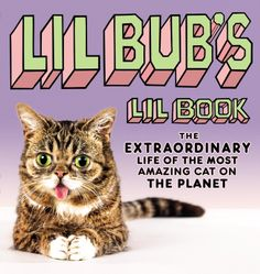 Lil BUB's Lil Book: The Extraordinary Life of the Most Amazing Cat on the Planet  by Lil BUB ($15.52)