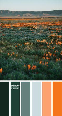 Color inspiration : Copper Green Mustard + Peacock & Teal Orange Color Schemes, Orange Color Palettes, Color Schemes Colour Palettes, Green Colour Palette, Green Colors, Blue Green, Bedroom Color Palettes, Kitchen Color Palettes, Orange Paint Colors