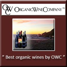 Using a Company Banner as Office Wall Art Company Banner, Organic Wine, Office Wall Art, Newfoundland, Wines, Eco Friendly, Products, Newfoundland Dogs, Beauty Products