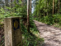 The Camino de Santiago is a centuries-old pilgrimage that begins in the French Pyrenees and meanders west along the northern coast of Spain.