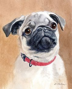 Pug Dog Art Print from Watercolor by P. Tarlow