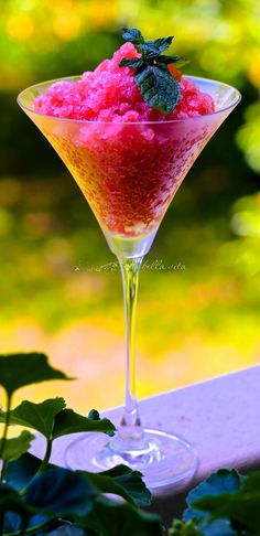 1000+ images about Cocktails & More on Pinterest | Cocktails, Martinis ...