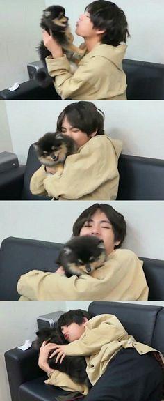 Totally Jealous of the dog here. I can literally see Tan poking his tongue at me. Bts Taehyung, Bts Bangtan Boy, Suga Suga, Bts Jimin, Foto Bts, Taekook, Bts Memes, Kpop, Fanart Bts