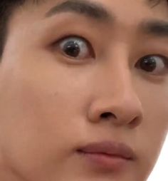Lee Donghae, Heechul, Super Junior, Lee Hyuk, Last Man Standing, Korean Wave, Korean Group, Hyungwon, Meme Faces