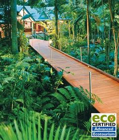 Silky Oaks Lodge & Healing Waters Spa in the oldest living rainforest in Australia.