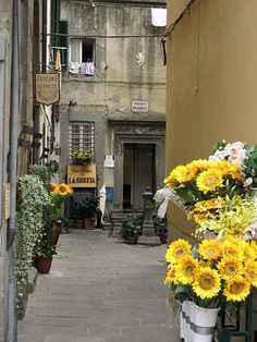 Cortona, Italy, This is the first place I would go! Great Places, Places To See, Beautiful Places, Rome Travel, Italy Travel, Dream Vacations, Vacation Spots, La Trattoria, Toscana Italia
