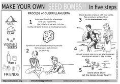 Bombas de Semillas de Articultores | Wefreebies http://www.wefreebies.com/bombas-de-semillas-de-articultores/