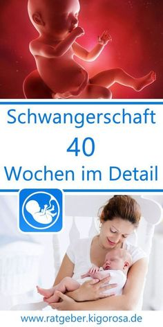 Wochenansicht - 40 Schwangerschaftswochen im Detail Weekly view - 40 weeks of pregnancy in detail - week after week you will receive information on th Get Baby, Mom And Baby, Breastmilk Storage Bags, Pediatric Nursing, Premature Baby, After Baby, Baby Kind, Baby Hacks, Having A Baby