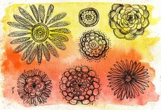 Flower pen drawings on a water colour background.