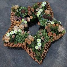 DIY star-shaped hanging wreath or table centerpiece with pinecone and tree nuts.Could frame the star with pinecones glued at tips them oasis star inside.With pine cones you can do the most beautiful things. The 10 most beautiful deco . Noel Christmas, Rustic Christmas, Winter Christmas, Christmas Wreaths, Christmas Decorations, Holiday, Pine Cone Crafts, Wreath Crafts, Christmas Crafts