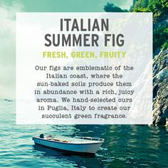 Have you smelt our new Italian Summer Fig Fragrance? It's fresh, green and fruity! Try it in-store! #italiansummerfig #thebodyshopaust