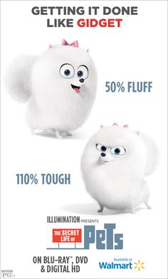 Which pet are you most like? Are you a ring leader like Gidget? Show your moxie! Own THE SECRET LIFE OF PETS on Blu-ray & DVD. Get it in-store or at walmart.com