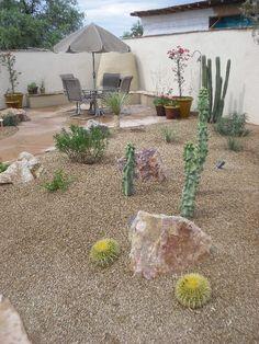 desert landscaping ideas for yard landscape ideas pinterest