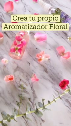 Diy Home Cleaning, Cleaning Hacks, Ideias Diy, Aromatherapy, Floral, Herbalism, Diy And Crafts, Life Hacks, Projects To Try
