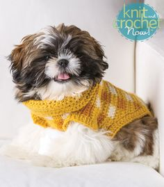 Free Crochet Pattern Download -- This Gingham-Style Crochet Dog Sweater, designed by Shiri Mor, is featured in episode 404 of Knit and Crochet Now! TV. Learn more here: www.knitandcrochetnow.com