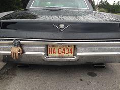 My loves new 68 cadi. Creepy Stuff, Vroom Vroom, Cadillac, Chevrolet Logo, Plates, My Love, Vehicles, Classic, Car