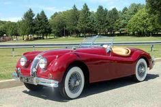 Let me introduce to you my dream ride The 1956 Jaguar roadster