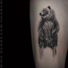 Bear. Marco C. Matarese tattoo | Etching, linework, engraving. Milan, Italy…