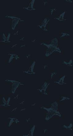 Flock in Flight in Midnight from Lake August #wallpaper #aviary #birds #black #blue