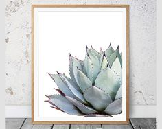 Cactus Print #108 Printable Art  This is an INSTANT DOWNLOAD of a beautiful mint, aqua and grey Cactus featuring deep purple tips that I photographed in a garden earlier this year. I love the subtle imprint on each leaf permanently left behind from the unfurling outer leaf, and the contrasting shades of purple tips against soft pastel grey blues and mint greens is just spectacular.  Just print them on your home printer, or have the files printed by your local printing shop like Officeworks…