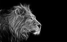 Abstract Lion Wallpaper , image collections of wallpapers Pure Black Wallpaper, Black Panther Hd Wallpaper, Beautiful Wallpaper Hd, Wild Animal Wallpaper, Android Wallpaper Black, Leopard Wallpaper, Black Background Wallpaper, Lion Wallpaper, Leopard Pictures
