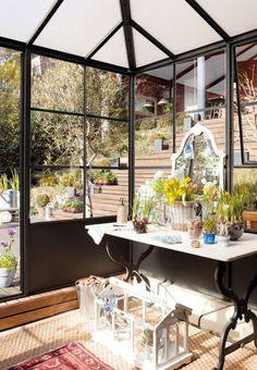 Wintergarten Gestaltungsideen Pflanzen Olivenbaum Orchideen ... Wintergarten Gestalten Welche Pflanzen Kommen Rein