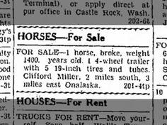Miller, Clifford: Horse for Sale