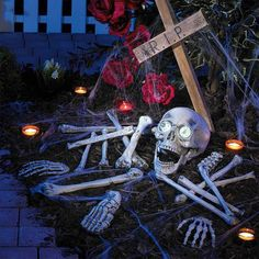 Halloween-Skelett mit Sound