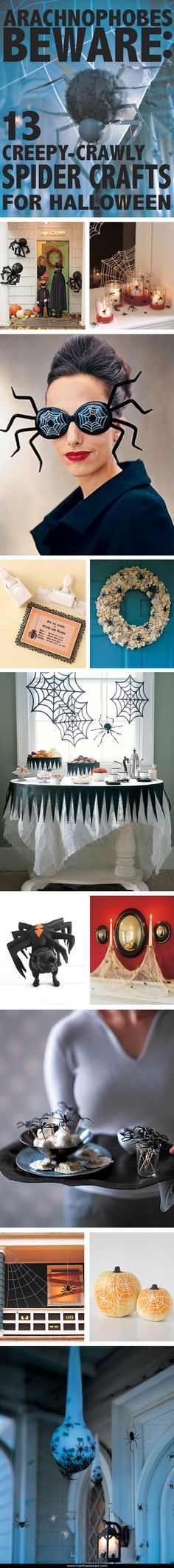 What spins cobwebs, inspires spooky stories, and has eight spindly legs? It's the spider -- the inspiration for your next craft project! From web-covered windows to creepy-crawly costume accessories, we have a range of ideas to decorate your home for Halloween this year.