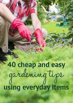 40 cheap and easy gardening tips using everyday items. Get ahead in the garden with these easy gardening tips - using objects you already have lying around! Includes advice on feeding plants and stopping pests