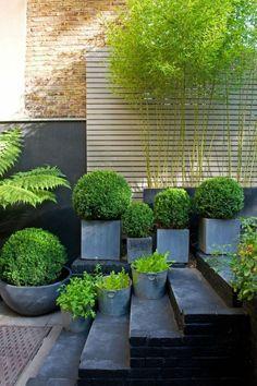 maceteros grandes, decoración patio gris oscuro, macetas cuadradas con boj, cubos de hojalata convertidos en macetas