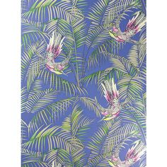 Buy Matthew Williamson Sunbird Wallpaper, Electric Blue / Fuchsia, W6543-04 Online at johnlewis.com