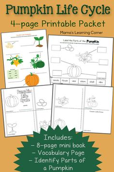 This FREE Pumpkin Lifecycle pack from Mama's Learning Corner contains:  Pumpkin Vocabulary Worksheet 8 Page Pumpkin Life Cycle Book Parts o