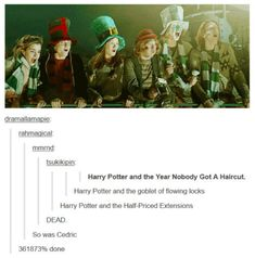 Bless the Harry Potter fandom.