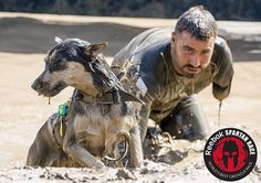 Check out Military Muscle Foundation Athlete @oriden757 from last week's Spartan Race in Colorado! @oriden757 is a veteran father and obstacle course race competitor and his service pup participates in the obstacle courses as well! Follow @oriden757 to see where he races next! ---------------------------------------------------- Need information or resources about PTSD/Veteran Suicide Awareness? Head over to http://www.foundation.militarymuscleinc.comto help save a veteran today.  #22toomany…