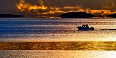 vakre helgeland Norway, Waves, Boat, Outdoor, Outdoors, Dinghy, Boats, Outdoor Games, Wave