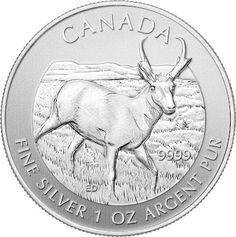 // Coins Bullion: 2013 Pronghorn Antelope - The 5th in the Royal Canadian Mints Wildlife Series